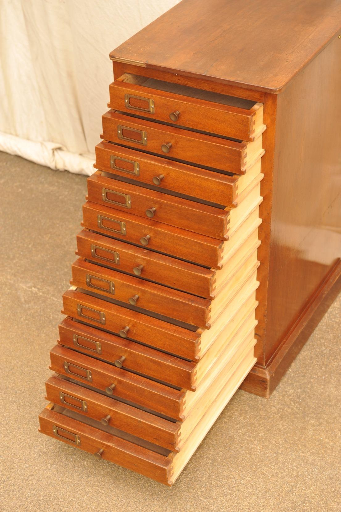 Sammlerschrank mit 12 Schubladen